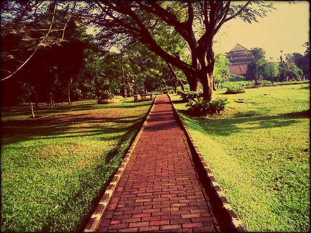 15 jalanan taman